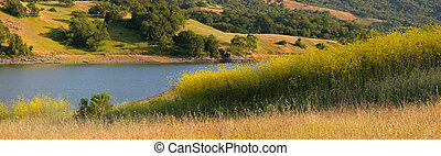 California lake and hillside in summer - Panorama of idyllic...