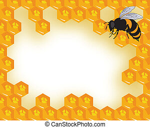 the vector bees and honeycomb with honey