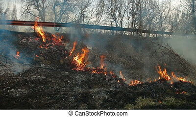 Brush Fire On The Roadside - wildfire on the side of the...