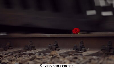 Red Flower On The Rail - heavy freight train crush fragile...