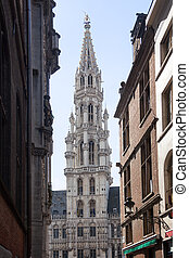 Brussels City Hall through narrow streets - Ornate Brussels...
