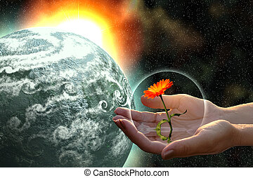 woman hands giving life - woman hands giving flower to grey...
