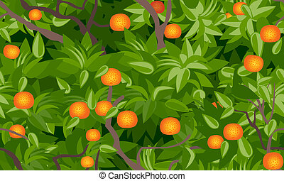 tangerine tree foliage seamless background vector drawing