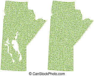 Map of Manitoba Canada in a mosaic of green squares