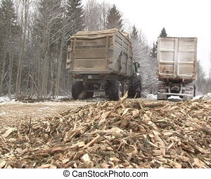 wood branch chips fuel
