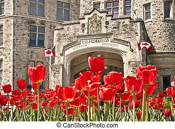 Spring Confed - The canadian Parliament Confederation...