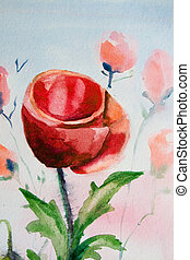 Poppy flower watercolor
