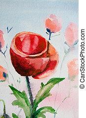 Poppy flower watercolor