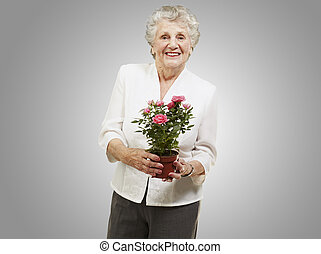 senior woman holding a flower pot against a grey background