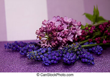 wiosna, kwiat, Glitzy, papier