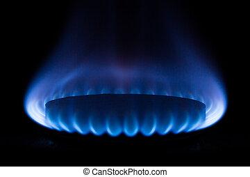 gas burner - kitchen gas burner on black