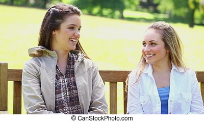 Smiling friends talking to each other in a park