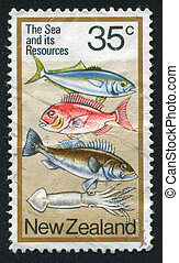 fish - NEW ZEALAND — CIRCA 1978: stamp printed by New...