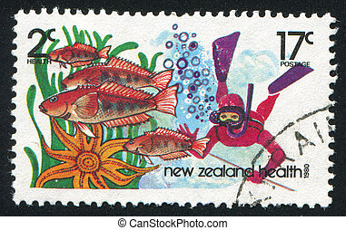 spear fishing - NEW ZEALAND — CIRCA 1980: stamp printed by...