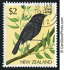 bird black robin - NEW ZEALAND — CIRCA 1985: stamp printed...