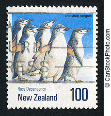 penguin chinstrap - NEW ZEALAND — CIRCA 1990: stamp...