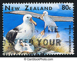 albatross - NEW ZEALAND — CIRCA 1996: stamp printed by New...
