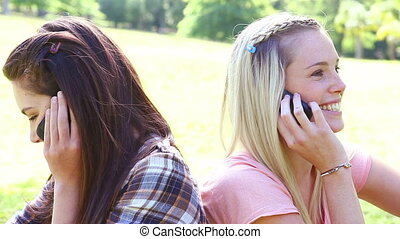 Smiling friends using their cellphones in a parkland