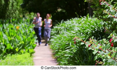Happy couple jogging together in a park