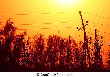 Electrical transmission tower landscape