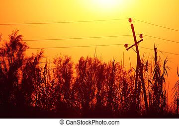 Electrical transmission tower landscape