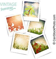 Vintage summer photos