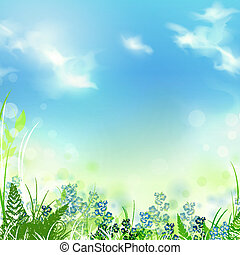 summer meadow - summer or spring meadow with green grass...