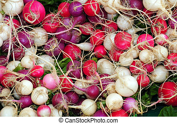 Colorful radishes at the market