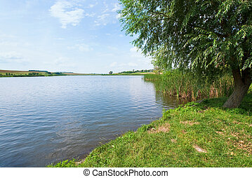 Summer rushy lake view with village on opposite shore