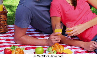 Smiling couple sitting on a blanket during a picnic in the...