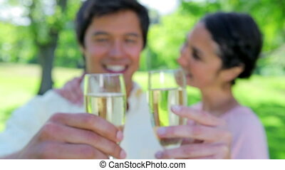 Couple drinking white wine in a parkland