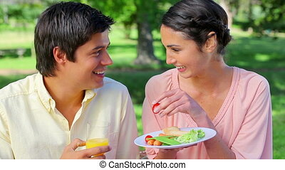 Smiling woman feeding her boyfriend during a picnic in the...