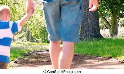 Young family walking in a park
