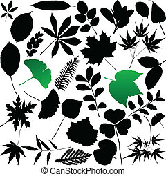 feuilles,  silhouette