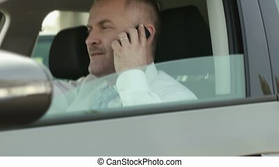 businessman in car with cell phone