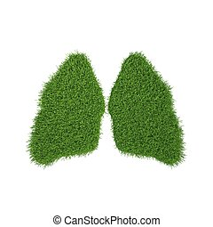 green grass lungs in white background 3d render