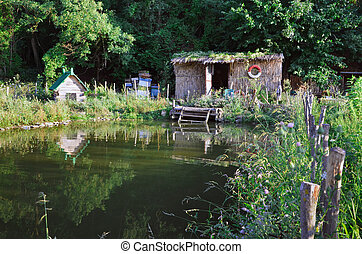 old shed near pond against forest