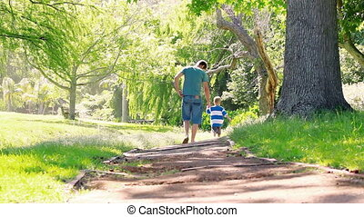 Rear view of father and son walking in a park