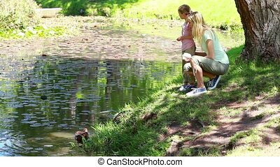Mother and her child nourishing ducks in a park