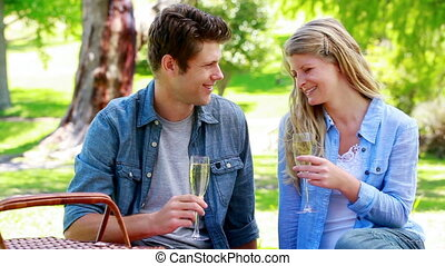 Couple drinking champagne in a park