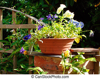 Flower pot in garden