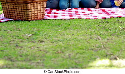 Family eating picnic in a park