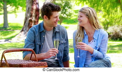 Couple cheering with champagne in a park