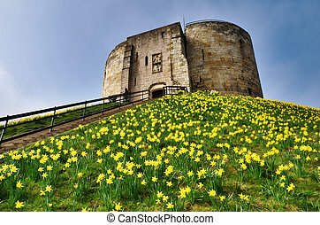 Cliffords Tower With Spring Daffodils - Cliffords Tower, the...