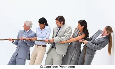 Business team playing Tug-of-War against a white background