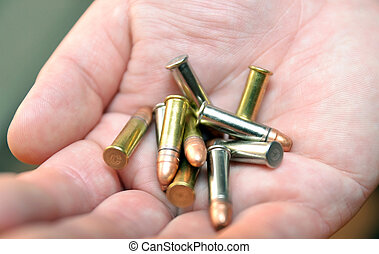Cartridges in hand,a mix of small sport bullets