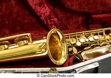 alto sax in the case