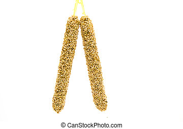 Millet hanging and on white background