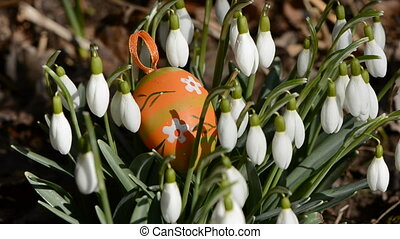 easter egg in the snowdrops