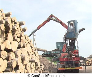biofuel from logs worker